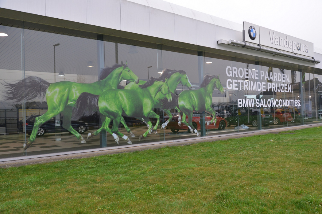 Windows come to life green horses